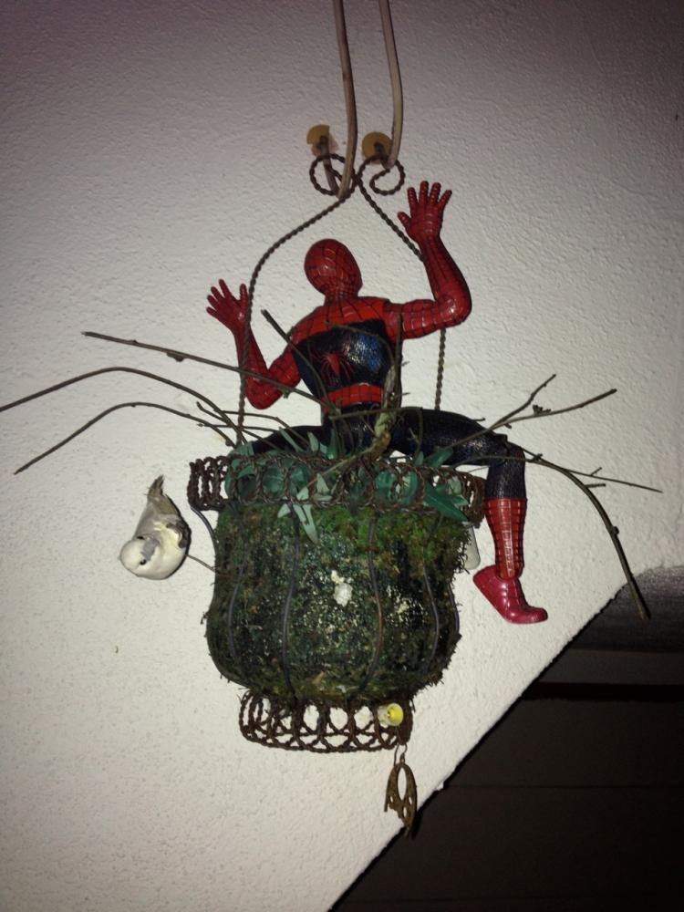 37 Spiderman
