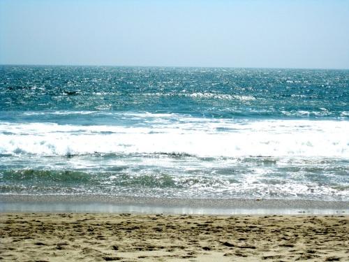 82 ocean